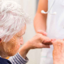 L'importanza dei Nutraceutici nella dieta e prevenzione nel morbo di Alzheimer©