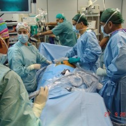 Ricerca e chirurgia nuove soluzioni per il trapianto di reni